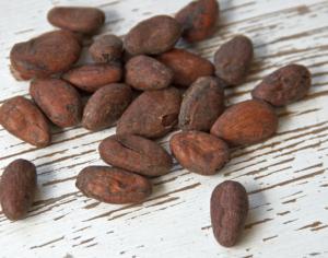 Bild einer Kakaobohne