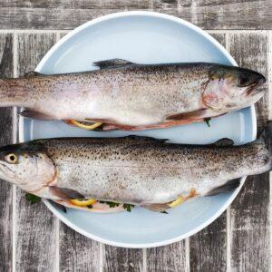 Nachhaltigkeit beim Fischkauf