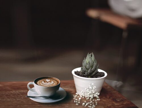 Mushroom-Coffee / Pilz-Kaffee: Alternative zum Bohnenkaffee
