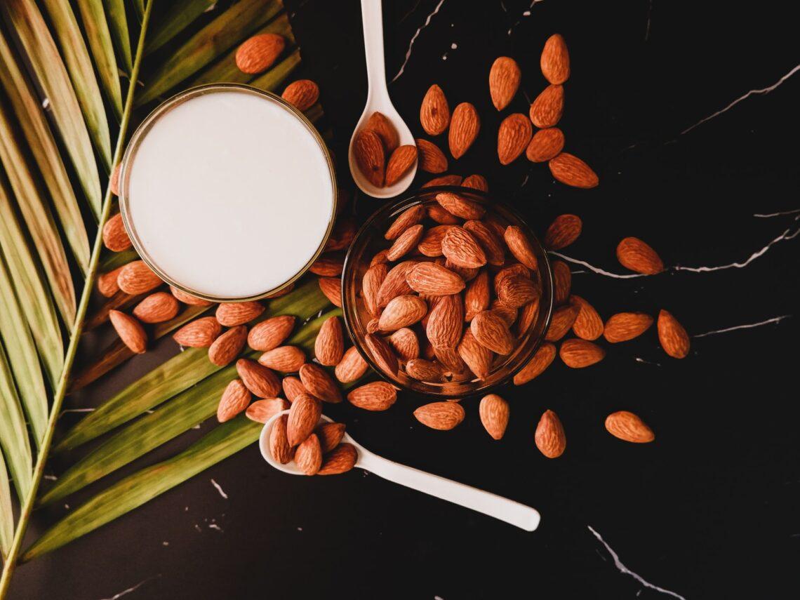 Hafer, Soja, Reis & Co. – Die gängigsten Milchalternativen im Vergleich